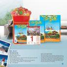 lịch tết giá rẻ tại Bình Phước